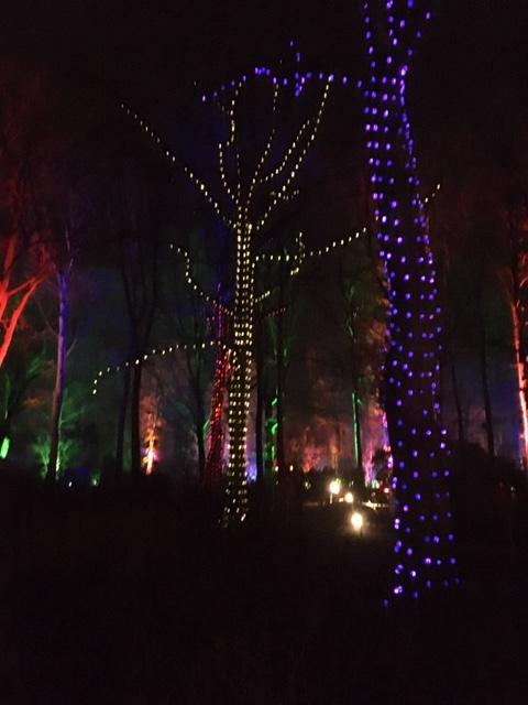 Dunham Christmas Lights